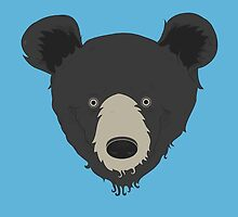 Bear by Compassion Collective