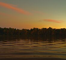 The River at Dusk by Dorothy  Pinder