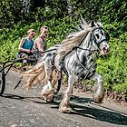 Trotting on Flash lane by Tarrby