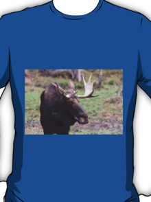 Large moose in a forest T-Shirt