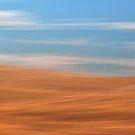 Grassland Impressions by Floyd Hopper
