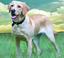 Gwyneth - Guide Dog In Training by kcd-designs
