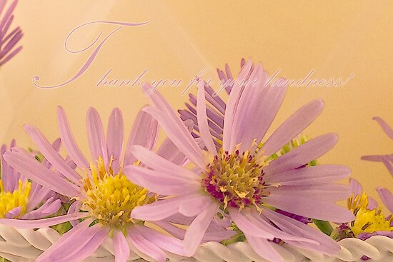 Wild Asters - Thank You For Your Kindness Card by Sandra Foster