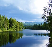 REFLECTIONS ON AN IDAHO LAKE ON A CLOUDY DAY by CHERIE COKELEY