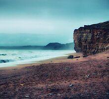 Misty Coast by Vicki Field