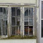 Spooky Window by WildestArt