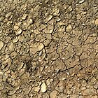 Dried Mud by Simon Duckworth