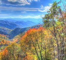 Great Smoky Mountain Fall by Noble Upchurch