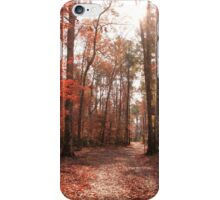 Fall Forest iPhone Case/Skin