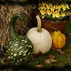 Fall Still Life by Kenneth Hoffman