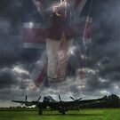 Veteran by Nigel Bangert