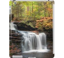 R. B. Ricketts in the Changing Forest  iPad Case/Skin