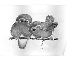 Feathered Friends Poster