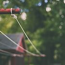 Homestead Clothesline by Bethany Helzer