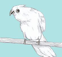 Bald-Eyed Cockatoo by Sophie Corrigan