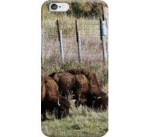 Good thing they fenced out those silly humans!  iPhone Case/Skin