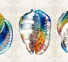 Colorful Seashell Art - Beach Trio - By Sharon Cummings by Sharon Cummings