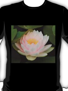 Pink Lotus with in pond. T-Shirt
