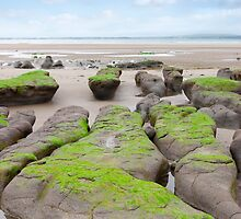 green mud banks at Beal beach by morrbyte