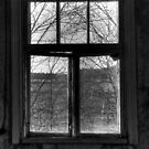 22.10.2014: Window View by Petri Volanen