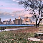 Park View Of Detroit by Barry W  King
