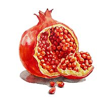 Pomegranate  by Irina Sztukowski