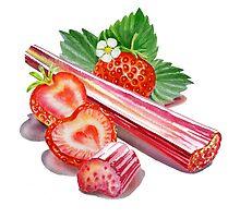 Rhubarb Strawberry by Irina Sztukowski