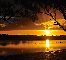 Sunset over Big Swamp by Ian Berry