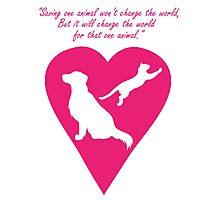 Dog and Cat Heart Photographic Print