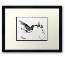 Precious - Hummingbird mixed media painting/drawing Framed Print