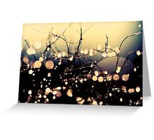 Where wishes come true. Greeting Card