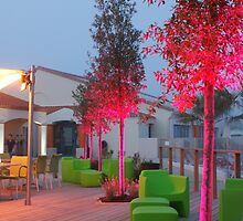 Pink trees by Desaster
