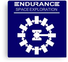 Interstellar - Endurance Space Craft Canvas Print