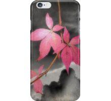 Last Leaves Of Autumn iPhone Case/Skin