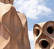 Gaudi faces by wiazemsky