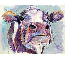 Purple Cow Photographic Print