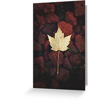 Autumn Pearls Greeting Card