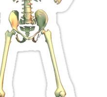 Spooky Scary Skeleton - R U sp00ked Sticker