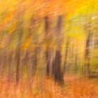 Autumn Spirits by sundawg7