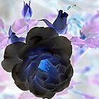 Dark Elegance....... by lynn carter