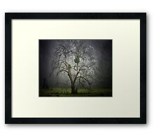 The Haunting - Mt Irvine NSW Australia Framed Print