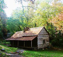 The Bud Ogle Farmhouse by Asoka