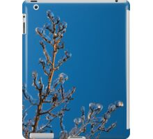 Mother Nature's Christmas Decorations - Gleaming Icy Baubles in Blue iPad Case/Skin