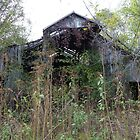 Old Barn In The Woods - Rutherford County, TN by Rebel Kreklow