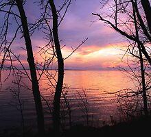 Autumn evening by Janet Gosselin
