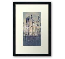 quill Framed Print