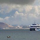 Bay Ferry Boat by David Denny