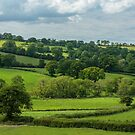 East Devon District, Devon, England by fotosic