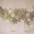 Lilacs 2015 Wall Calendar by Tracy Edgar