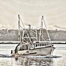 New Avalon - heading home - Richmond River Ballina by KarenEaton